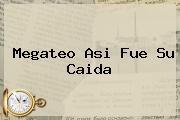 <b>Megateo</b> Asi Fue Su Caida