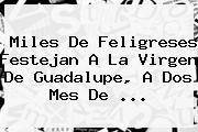 Miles De Feligreses Festejan A La <b>Virgen De Guadalupe</b>, A Dos Mes De <b>...</b>