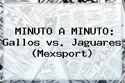 MINUTO A MINUTO: Gallos <b>vs</b>. <b>Jaguares</b> (Mexsport)