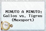 MINUTO A MINUTO: Gallos <b>vs</b>. <b>Tigres</b> (Mexsport)
