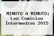 MINUTO A MINUTO: Los Comicios Intermedios <b>2015</b>