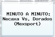 MINUTO A MINUTO: <b>Necaxa Vs</b>. <b>Dorados</b> (Mexsport)