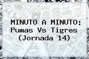 MINUTO A MINUTO: <b>Pumas Vs Tigres</b> (Jornada 14)