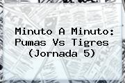 Minuto A Minuto: <b>Pumas Vs Tigres</b> (Jornada 5)