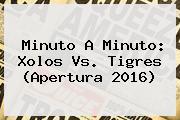Minuto A Minuto: <b>Xolos Vs</b>. <b>Tigres</b> (Apertura 2016)