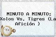 MINUTO A MINUTO: <b>Xolos Vs</b>. <b>Tigres</b> (La Afición )