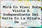 Mirá En Vivo: Boca Visita A Independiente Del Valle En La Altura De ...