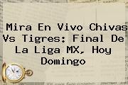 Mira En Vivo <b>Chivas Vs Tigres</b>: <b>Final</b> De La Liga MX, Hoy Domingo