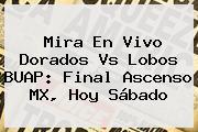 Mira En Vivo <b>Dorados Vs Lobos BUAP</b>: Final Ascenso MX, Hoy Sábado