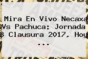 Mira En Vivo <b>Necaxa Vs Pachuca</b>: Jornada 3 Clausura 2017, Hoy ...