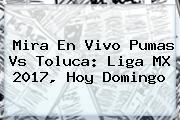 Mira En Vivo <b>Pumas Vs Toluca</b>: Liga MX 2017, Hoy Domingo