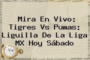 Mira En Vivo: Tigres Vs Pumas: Liguilla De La <b>Liga MX</b> Hoy Sábado