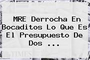 MRE Derrocha En Bocaditos Lo Que Es El Presupuesto De Dos ...