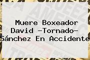 Muere Boxeador David ?<b>Tornado</b>? <b>Sánchez</b> En Accidente