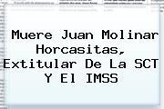 Muere <b>Juan Molinar Horcasitas</b>, Extitular De La SCT Y El IMSS