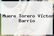 Muere Torero <b>Víctor Barrio</b>