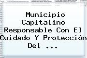 Municipio Capitalino Responsable Con El Cuidado Y Protección Del <b>...</b>
