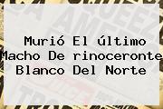 Murió El último Macho De <b>rinoceronte Blanco</b> Del Norte