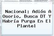 Nacional: Adiós A <b>Osorio</b>, Busca DT Y Habría Purga En El Plantel