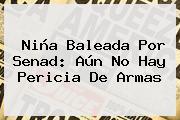<b>Niña</b> Baleada Por Senad: Aún No Hay Pericia De Armas