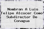Nombran A Luis Felipe Alcocer Como Subdirector De <b>Conagua</b>