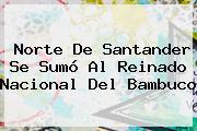 Norte De Santander Se Sumó Al Reinado <b>Nacional</b> Del Bambuco