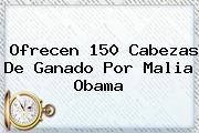 Ofrecen 150 Cabezas De Ganado Por <b>Malia Obama</b>