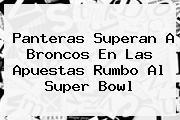 Panteras Superan A Broncos En Las Apuestas Rumbo Al <b>Super Bowl</b>