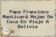 Papa Francisco Masticará Hojas De Coca En Viaje A <b>Bolivia</b>