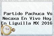 Partido <b>Pachuca Vs Necaxa</b> En Vivo Hoy En Liguilla MX 2016