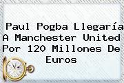 Paul <b>Pogba</b> Llegaría A Manchester United Por 120 Millones De Euros