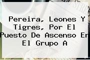 <b>Pereira</b>, Leones Y Tigres, Por El Puesto De Ascenso En El Grupo A