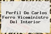 Perfil De <b>Carlos Ferro</b> Viceministro Del Interior