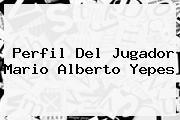 Perfil Del Jugador <b>Mario Alberto Yepes</b>