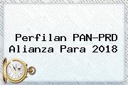 Perfilan <b>PAN</b>-<b>PRD Alianza</b> Para <b>2018</b>