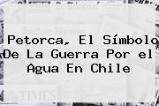 Petorca, El Símbolo De La Guerra Por <b>el Agua</b> En Chile