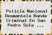 <b>Policía Nacional</b> Desmantela Banda Criminal En San Pedro Sula <b>...</b>