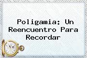 <b>Poligamia</b>: Un Reencuentro Para Recordar