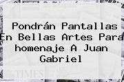 Pondrán Pantallas En Bellas Artes Para <b>homenaje A Juan Gabriel</b>