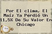 Por El <b>clima</b>, El Maíz Ya Perdió Un 11,5% De Su Valor En <b>Chicago</b>
