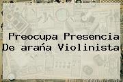 Preocupa Presencia De <b>araña Violinista</b>