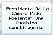 Presidente De La Cámara Pide Adelantar Una Asamblea <b>constituyente</b>
