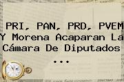 <b>PRI</b>, PAN, PRD, PVEM Y Morena Acaparan La <b>Cámara De Diputados</b> <b>...</b>