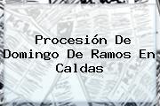 Procesión De <b>Domingo De Ramos</b> En Caldas