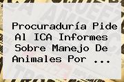 <b>Procuraduría</b> Pide Al ICA Informes Sobre Manejo De Animales Por <b>...</b>