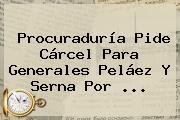 <b>Procuraduría</b> Pide Cárcel Para Generales Peláez Y Serna Por ...