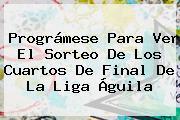 Prográmese Para Ver El Sorteo De Los Cuartos De Final De La <b>Liga Águila</b>