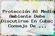 <b>Protección</b> Al Medio Ambiente Debe Discutirse En Cuba: Consejo De <b>...</b>