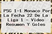 <b>PSG</b> 1-1 <b>Monaco</b> Por La Fecha 22 De La Liga 1 - Video Resumen Y Goles