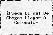 ¿Puede El <b>mal De Chagas</b> Llegar A Colombia?